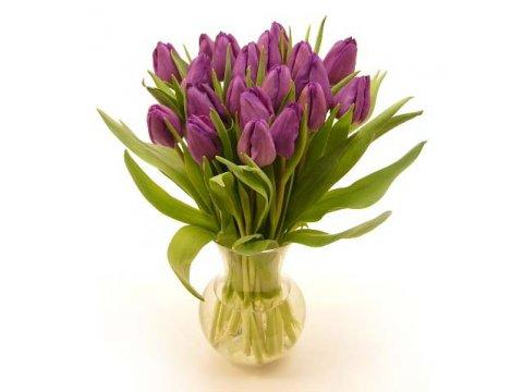 Букет фиолетовых тюльпанов №396