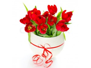 Букет красных тюльпанов в коробочке №408