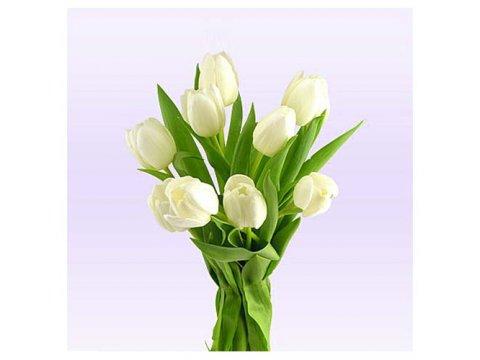 Букет белых тюльпанов №345