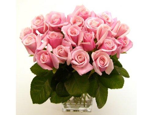 Букет розовых роз №379