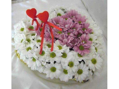 Сердце из белых и розовых хризантем
